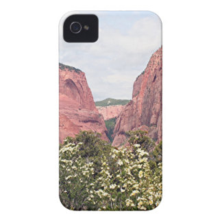 Barrancos de Kolob, parque nacional de Zion, Utah, Case-Mate iPhone 4 Cárcasas