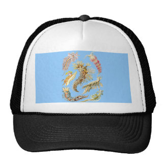 Barras de mar gorros bordados