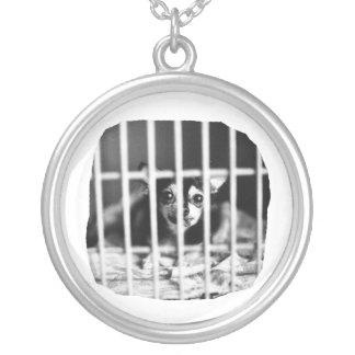 barras detrás blancos y negros de la jaula de la colgante redondo