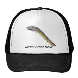 Barred Forest Racer Trucker Hat