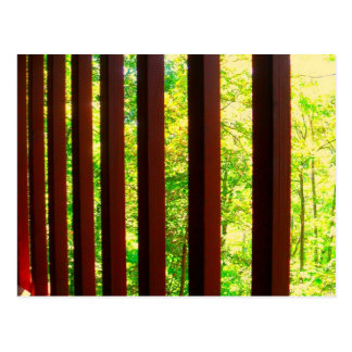 Barred from Nature Postcard