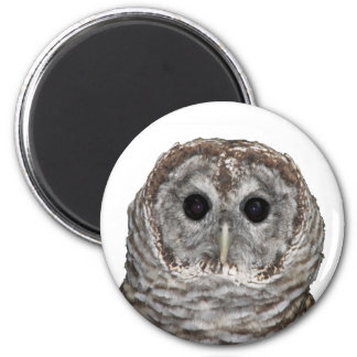 Barred Owl 2 Inch Round Magnet