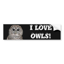 Barred Owl Bumper Sticker