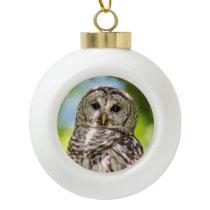 Barred Owl Ceramic Ball Christmas Ornament