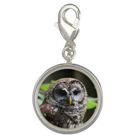 Barred Owl Charm