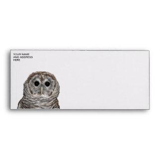 Barred Owl Envelope
