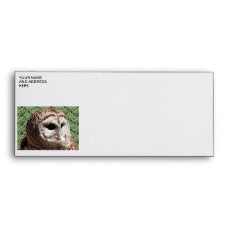 Barred Owl Envelopes