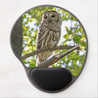 Barred Owl Gel Mouse Pad