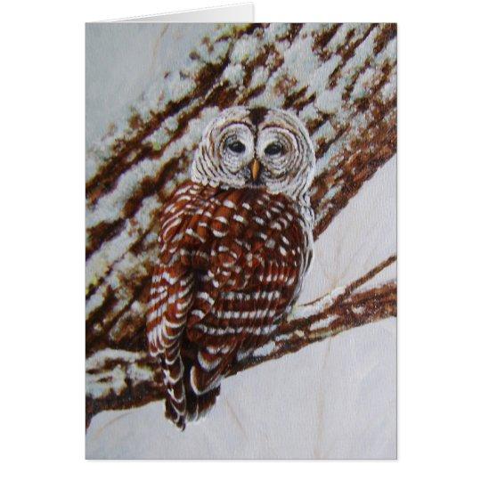 Barred Owl Greeting Card -blank inside