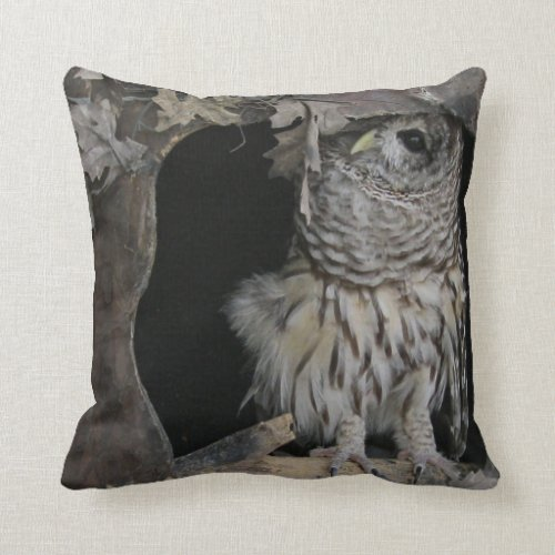Barred Owl - Here's Looking at You! Throw Pillow - Available on Zazzle - Photo by Cynthia Sylvestermouse