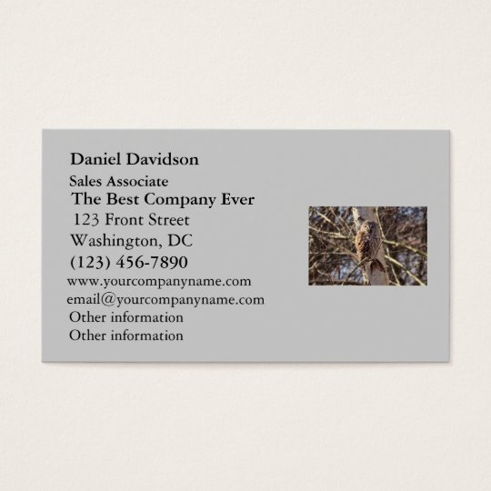 Barred Owl in a Birch Tree Photo Business Card