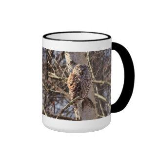 Barred Owl in a Birch Tree Photo Coffee Mug