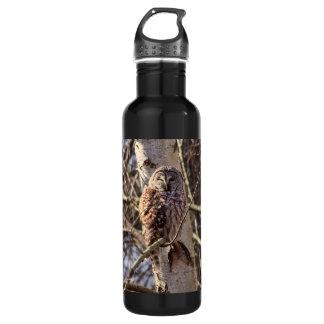 Barred Owl in a Birch Tree Photo Water Bottle