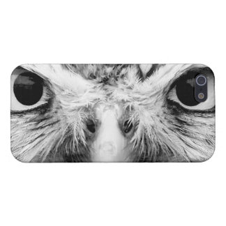 Barred Owl in Black and White iPhone SE/5/5s Case