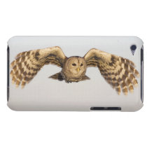 Barred Owl in Flight Barely There iPod Cover