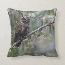 Barred Owl in Old Growth Hammock Throw Pillow