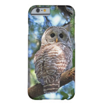 Barred Owl in the Forest Barely There iPhone 6 Case