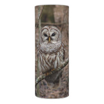 Barred Owl in Woods LED Candle
