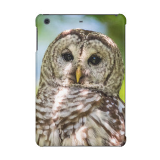 Barred Owl iPad Mini Covers