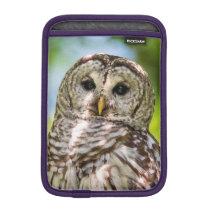 Barred Owl iPad Mini Sleeve