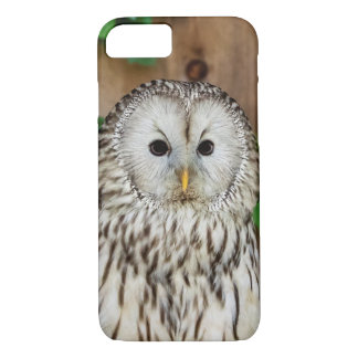 Barred Owl iPhone 8/7 Case