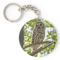 Barred Owl Keychain