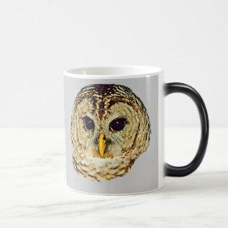 Barred Owl Morph Mug