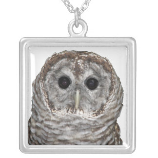 Barred Owl Square Pendant Necklace