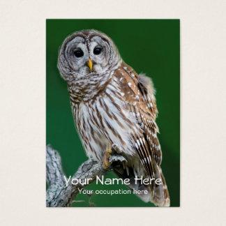Barred Owl Ornithologist, Bird Guide, Birder Business Card