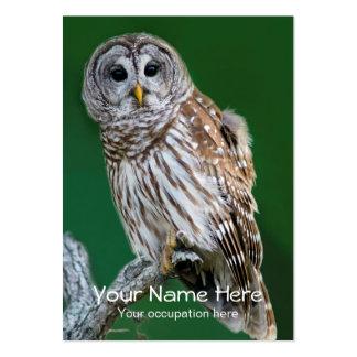 Barred Owl Ornithologist, Bird Guide, Birder Large Business Cards (Pack Of 100)