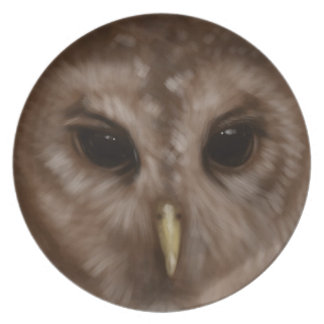 Barred owl painted art dinner plate