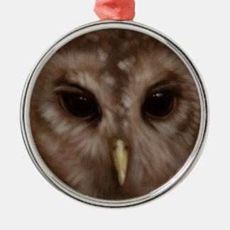 Barred owl painted art christmas tree ornaments