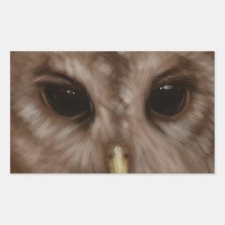 Barred owl painted art rectangular sticker