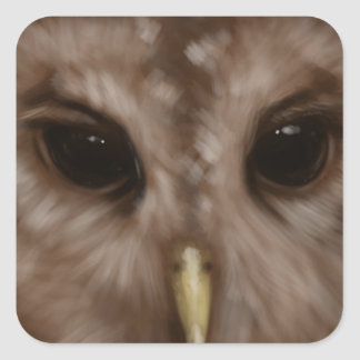 Barred owl painted art square sticker