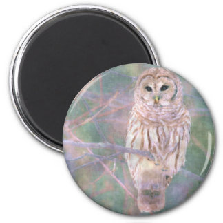 Barred Owl Pastel Oilpainting 2 Inch Round Magnet