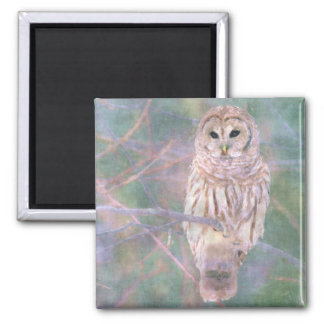 Barred Owl Pastel Oilpainting 2 Inch Square Magnet