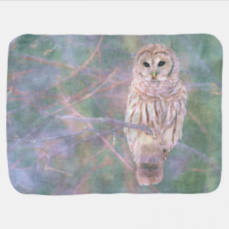 Barred Owl Pastel Oilpainting Baby Blanket