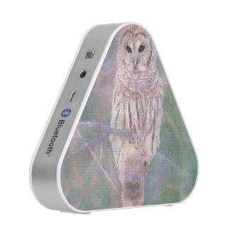 Barred Owl Pastel Oilpainting Bluetooth Speaker