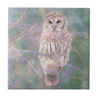 Barred Owl Pastel Oilpainting Ceramic Tile
