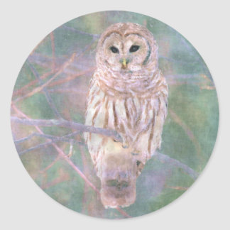 Barred Owl Pastel Oilpainting Classic Round Sticker