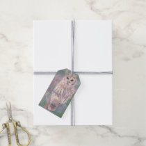 Barred Owl Pastel Oilpainting Gift Tags
