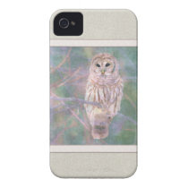 Barred Owl Pastel Oilpainting iPhone 4 Case