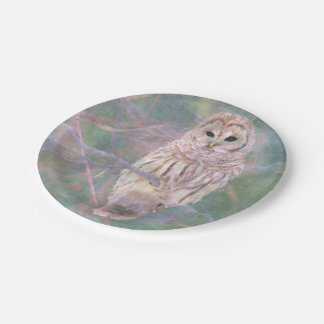 Barred Owl Pastel Oilpainting Paper Plate