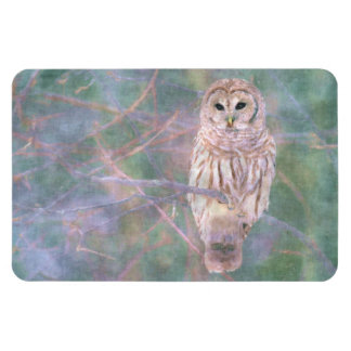 Barred Owl Pastel Oilpainting Rectangular Photo Magnet