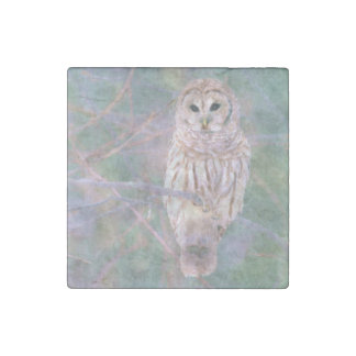 Barred Owl Pastel Oilpainting Stone Magnet