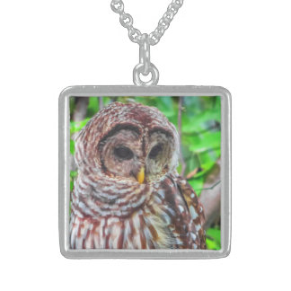 Barred Owl Pendants, Necklaces and Lockets