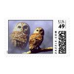 Barred Owl Postage