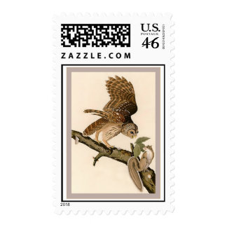 Barred Owl Stamps