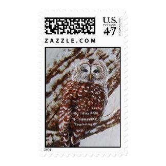 Barred Owl postage stamp