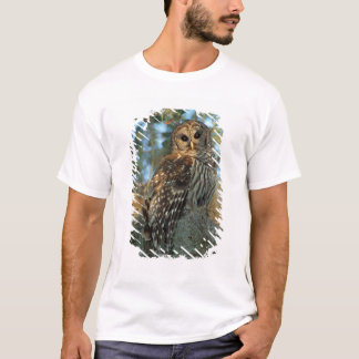 Barred Owl roosting in some Spanish Moss T-Shirt